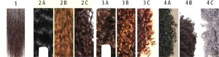 Andre Walker Hair Chart Andre Walker Oprahs Hair Stylist Created A Hair Typing