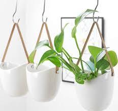 5pcs hanging planters wall planters
