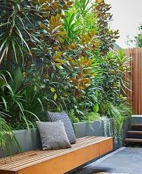 tropical gardens without the tropics