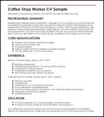 Examples Of Professional Skills Old Fashioned Good Computer Literate Resume Image Professional