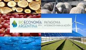 Resultado de imagen para bioeconomia patagonica 2016