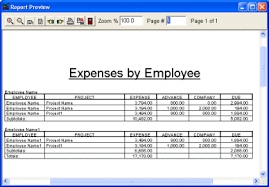espense report 6 employee expense report templates word templates