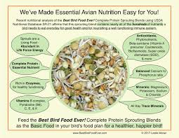 Protein In Foods Chart Usda Nutritional Chart For Best Bird Food Ever Best Bird Food Ever