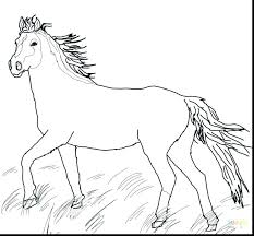 Mustang Wild Horse Coloring Page Free Printable Pages Herd