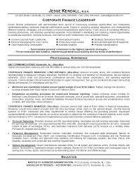 Vice President Resume Samples Finance Resume Examples Vice President Of Finance Resume Examples