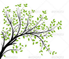 tree branch with leaves vector. vector tree branch silhouette over white - characters vectors with leaves i