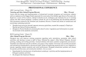 ... Resume Example, Activity Director Sample Resume With Objective  Microsoft Word JK After School Program Director ...