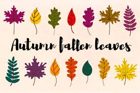Free leaf icons in wide variety of styles like line, solid, flat, colored outline, hand drawn and many more such styles. Autumn Leaves Svg Fall Leaves Cut File 880495 Illustrations Design Bundles