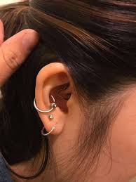 Chart Of Ear Piercings 125 Ear Piercings Ideas For Women And Men Plus Must Know