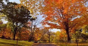 Fall Equinox Rituals To Celebrate Start Of Autumn 2018
