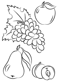 Autumn Fruits Coloring Page Free Printable Coloring Pages