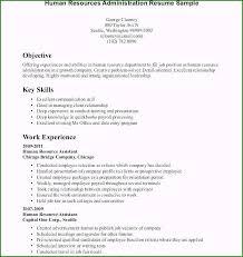 46 Singular Free Resume Templates For Highschool Students
