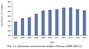 Российский ПМС Численность основных видов пушных зверей на  Численность бобра в России 2005 2015