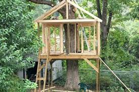 Image Awesome Treehouse Ideas Sheer Window Treatments Easy Treehouse Plans For Kids Architectures Arte Examples