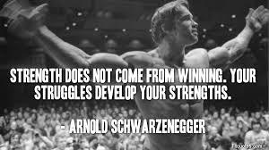 Arnold Schwarzenegger Quotes Cool Arnold Schwarzenegger Quotes Fit Quotes