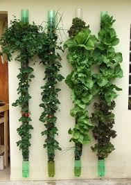 Small Picture Vertical Vegetable Garden Designs Ideas Home Design Ideas