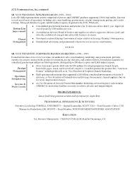 Objective For Information Technology Resume Best of Information Technology Director Resume Kappalab
