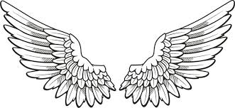 hawk wing clipart. Contemporary Clipart Wing20clipart Throughout Hawk Wing Clipart 1