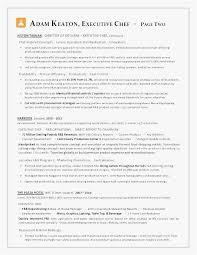 Executive Chef Resume Objective Download Executive Chef Resume
