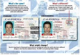 Licenses Dmv Enterprise Press Revving – Driver's Immigration For Up