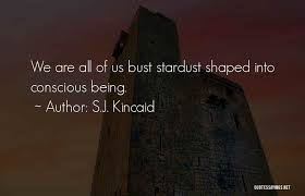 Stardust Quotes Inspiration Top 48 We Are Stardust Quotes Sayings