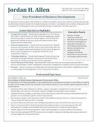 professional resume samples by julie walraven  cmrwvice president business development resume sample