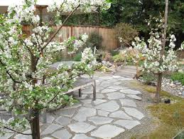 houzz gardens. our list of 12 best plants for small urban gardens will get you on track. houzz t