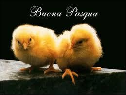 Auguri di buona Pasqua dalla Virtus Cesena 2010