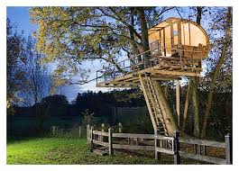 House Plan Zelkova Treehouse DIY Plans To Fit Two Trees Tree House