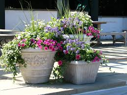 Outstanding Patio Pots Ideas Best Image Libraries Goodnews6Info