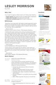 Senior Account Executive Cv Beispiel Visualcv Lebenslauf Muster