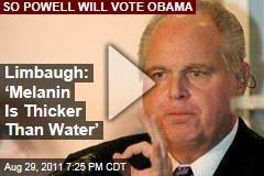 Racist Quotes Rush Limbaugh racist quotes News Stories About Rush Limbaugh 53