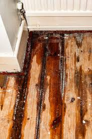 house leak issues solutions wimpy s
