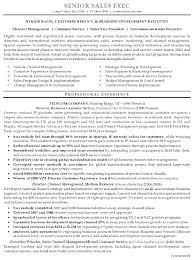 Perfect Sales Resume Mazard Info