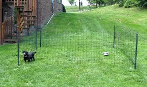 dog fencing for gardens agility garden