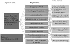 Nursing Care Plan For A Baby With Birth Asphyxia Figure 2 From Using Quality Improvement To Decrease Birth