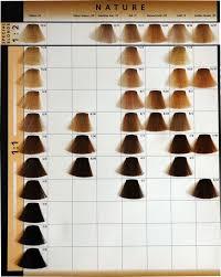 Majirel Hair Color Chart Pdf Loreal Majirel Hair Color Chart Pdf Hair Coloring