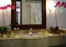 Decorating For Bathrooms Decorated Bathrooms Home Design Ideas