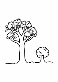 Small Picture Outline Coloring Page Free Printable Pages Without Leaves Tree