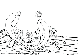 Dolphin Coloring Pages Printable Dolphin Coloring Pages Free