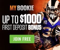 Nfl Public Betting Guide Usa Guide To Betting Against The