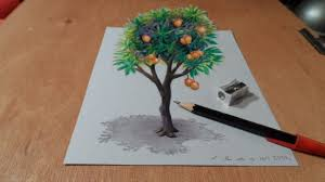 drawing tree how to draw 3d mango tree trick art on paper