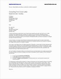 Resume Template For Word Best Of Microsoft Word Resume Examples
