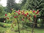 Подпорка для розы