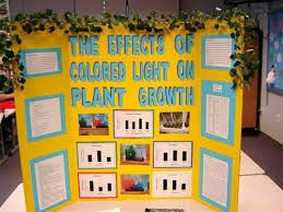 Science Fair Display Boards Science Project Display Board Template