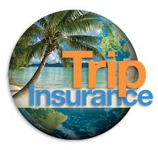 DAN Boater Travel Insurance Get A Free Quote Beauteous Travelers Insurance Quote