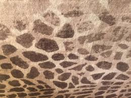new pottery barn ken fulk giraffe printed 8 x 10 rug authentic make me an offer
