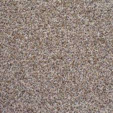 In Stock Twist & Frieze Carpet The Home Depot