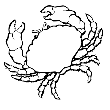 Small Picture Crab coloring sheet Animals Town Free Crab color sheet