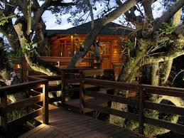 Best Treehouse Plans and Designs   Coolest Tree Houses Evercasa heli